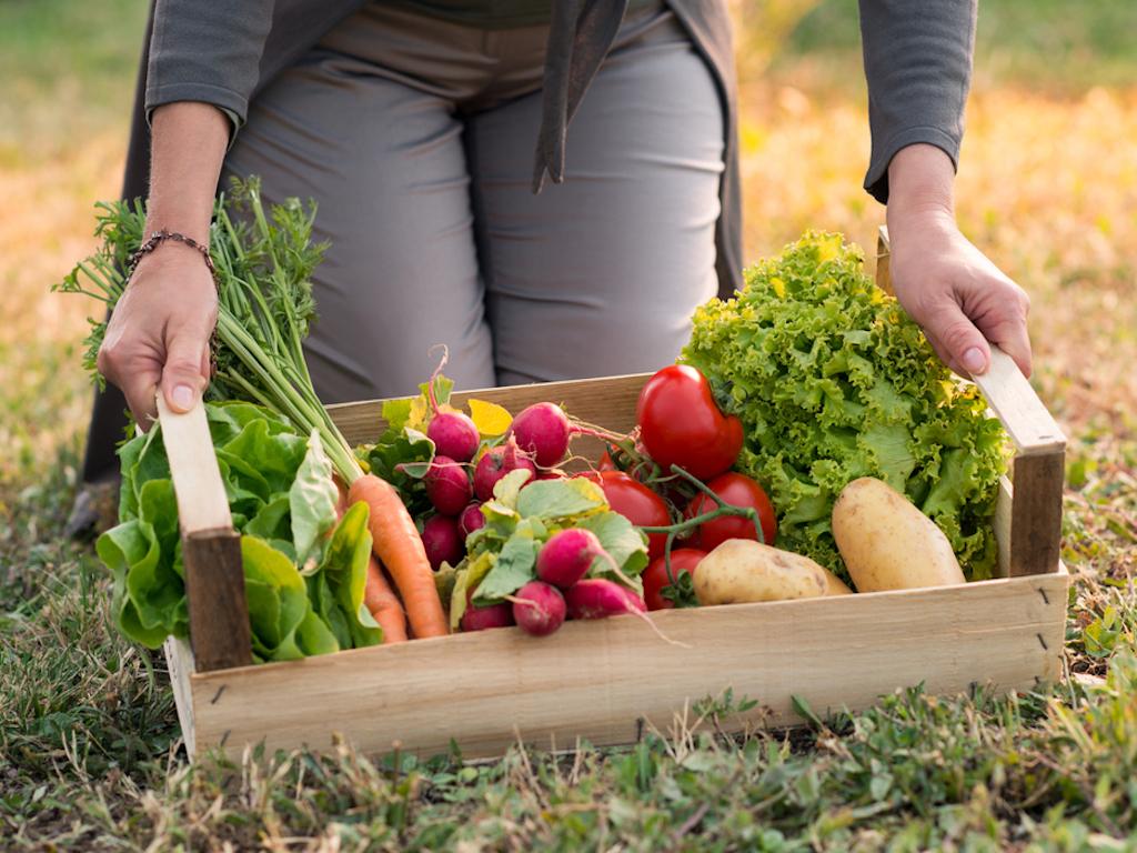 go organic remove toxins